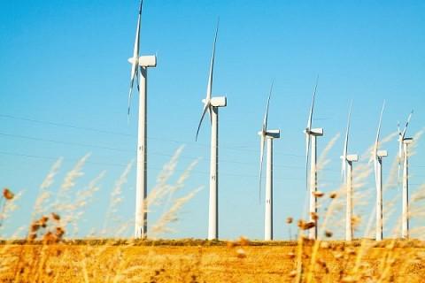 Sector eólico muestra crecimiento sostenido en España